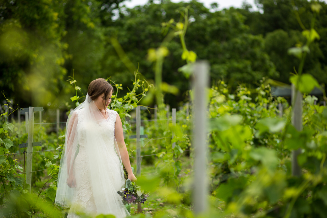 wedding dress trends lovebird bridal kingston photographer rob whelan portrait vineyard bride waupoos pec